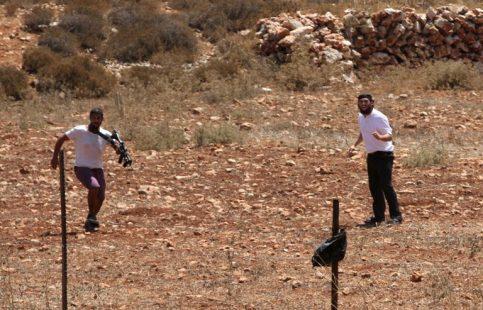 الخليل: مستوطنون يواصلون نصب خيام على أرض للاستيلاء عليها