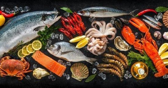 المأكولات البحريّة الأكثر استهلاكا.. توقعات بتغيير الغذاء مستقبلا