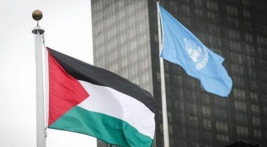 منسقة الأمم المتحدة