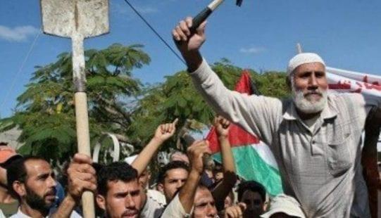 مدينة دير البلح تُسجل أعلى نسبة بطالة في فلسطين