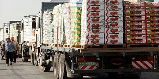 الميزان التجاري - الزراعة بغزة - مزارعو غزة - الاحصاء - معبر كرم أبو سالم