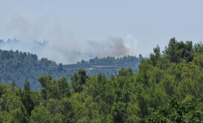اندلاع حرائق جديدة في أحراش وغابات مدينة القدس