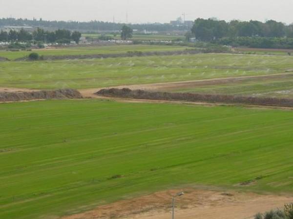 سلطة الأراضي تطلق المرحلة الأولى لمشروع تسوية حقوق ملكية الأراضي بغزة